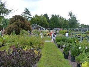 Workshop: Choosing the Right Shrubs for your Landscape @ Plumline Nursery | Murrysville | Pennsylvania | United States