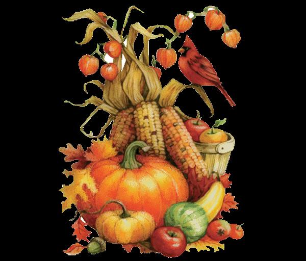 Happy Thanksgiving - CLOSED - Plumline Nursery