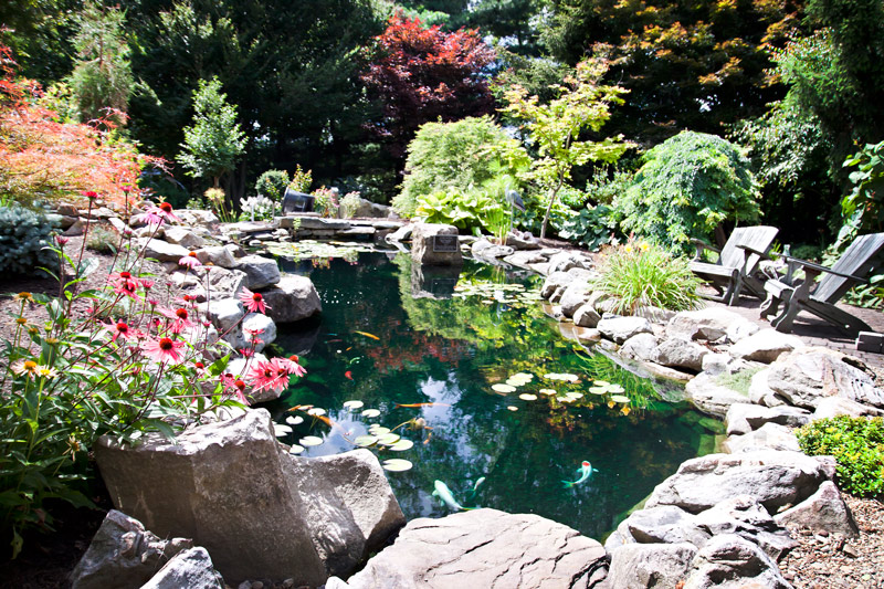 Plumline Landscaping and Design Gallery
