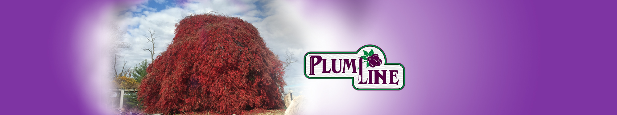 Plumline Nursery Red Tree Banner